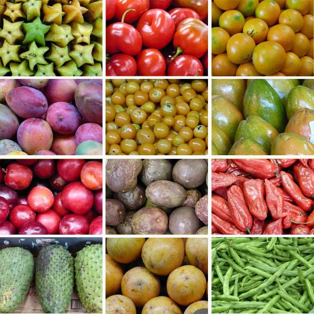 Marchés_Fruits_Légumes