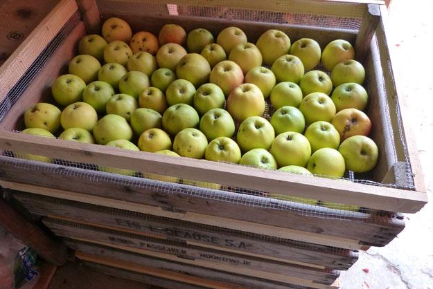 cuisine_pommes