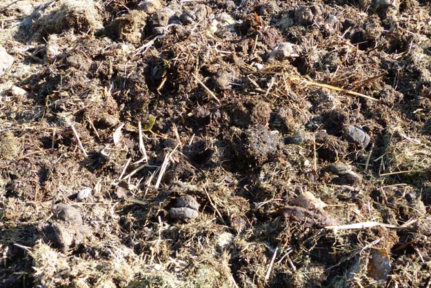 terre_compost