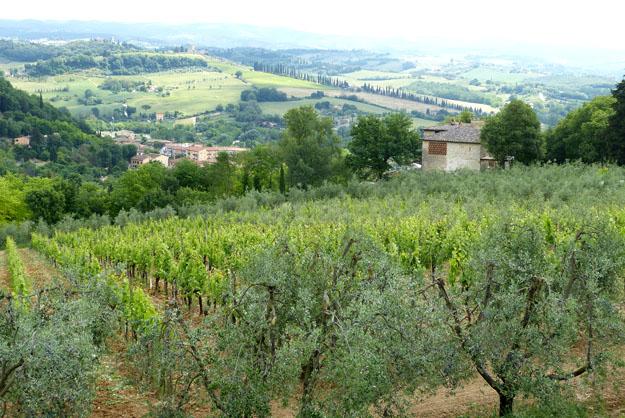 Paysage de Toscane