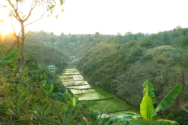 paysage typique des Chittagong Hill Tracts