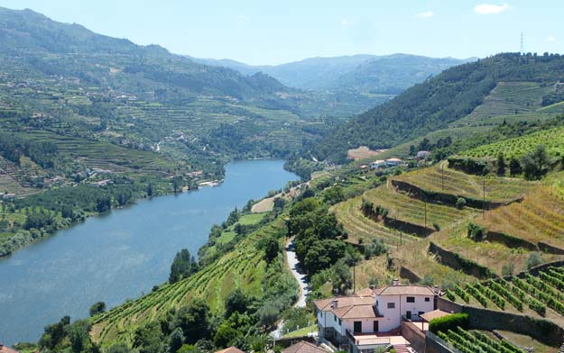 Bords du Douro. Vignobles en terrasses